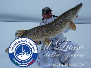 A003A---Northern-Pike-1