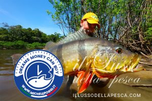 Peacock bass Colombia flyfishing