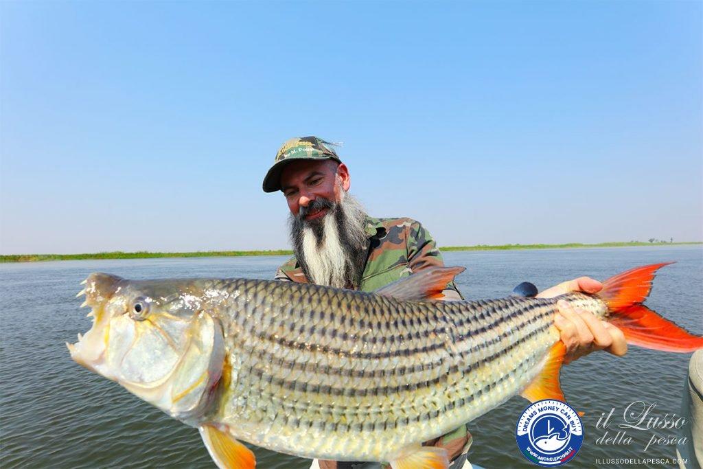 Record Tigerfish Poggi