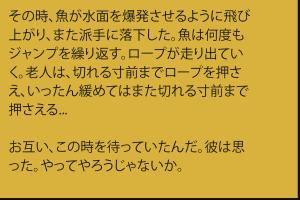 combattimenti-jp-11