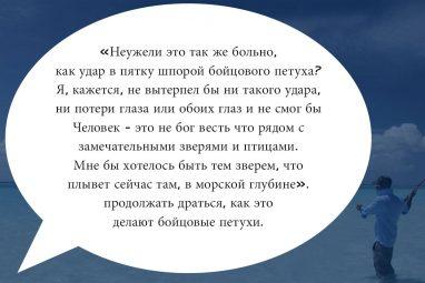 combattimenti-ru-07