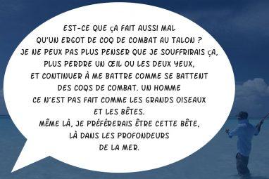 combattimenti07-fr